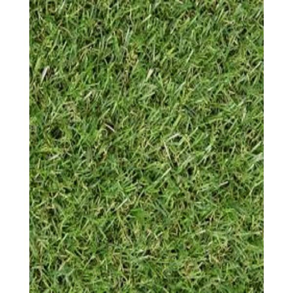 Sajalo Artificial Green Grass Rug 4x6 Ft (40 mm)